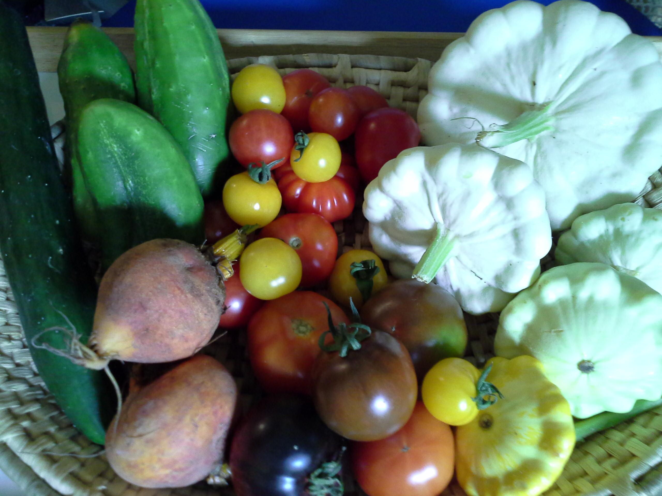 September Garden Harvest